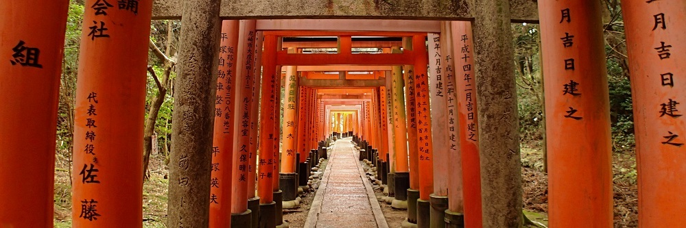 Tunnel of torii gates at Fushimi Inari shrine in Kyoto, Japan