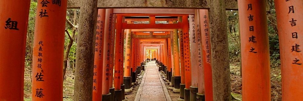 Tunnel of torii gates at Fushimi Inari shrine in Kyoto, Japan