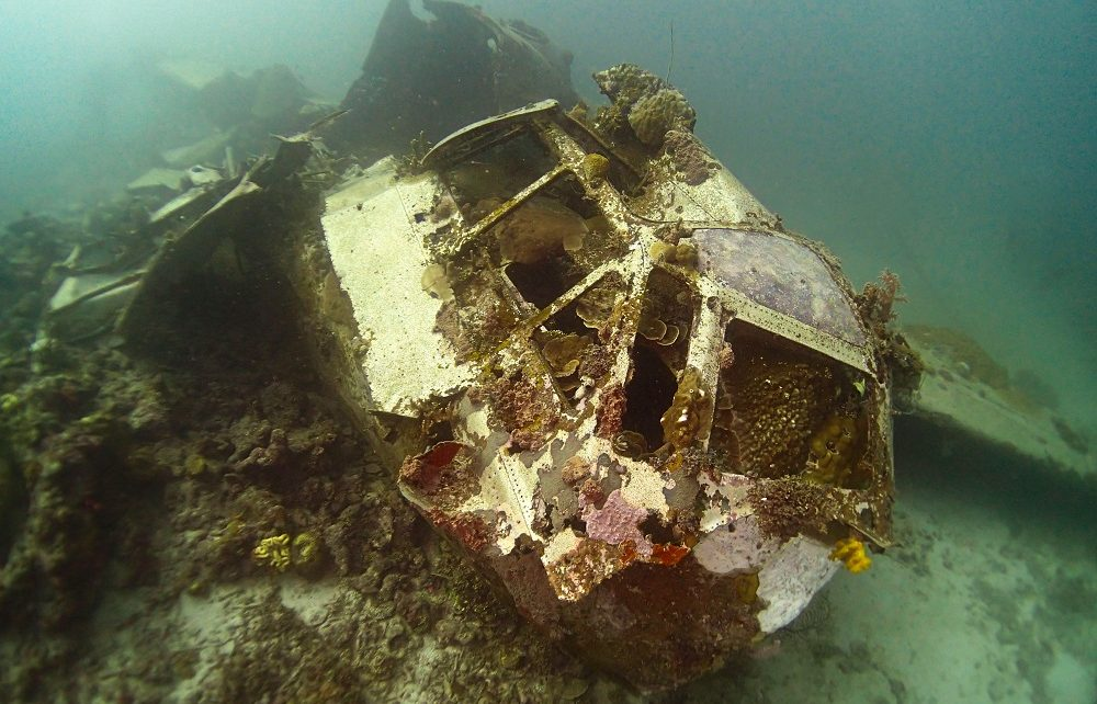 Coral encrusted cockpit of the Betty Bomber aeroplane in Chuuk Lagoon, Micronesia