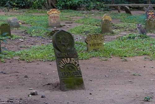 Gravestones and monkey at Ubud Monkey Forest, Bali