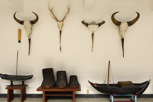 Animal Trophies at Reunification Palace, Ho Chi Minh City, Vietnam