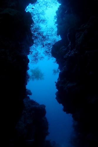 An underwater cave at Menjangan Island in Bali, Indonesia