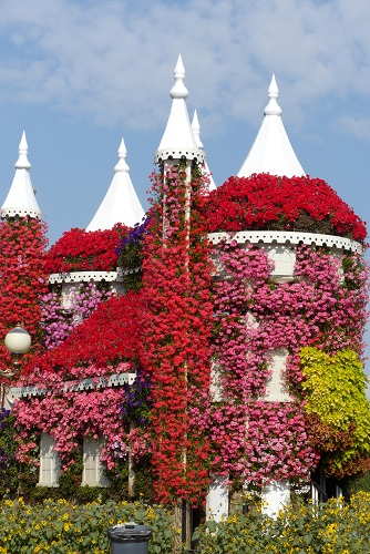 Flower castle at Dubai Miracle Garden, UAE