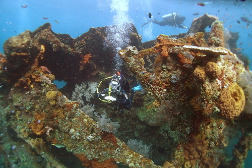 Maddy diving on the Liberty wreck in Tulamben, Bali