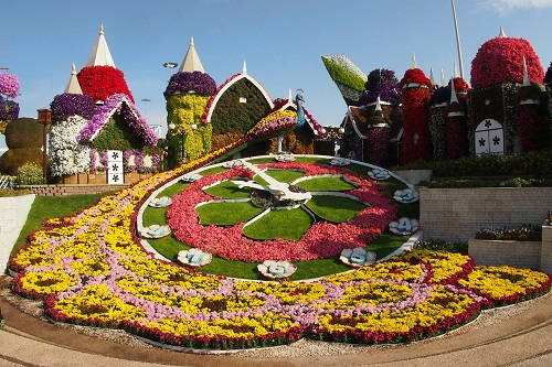Flower peacock and clock at Dubai Miracle Garden, UAE