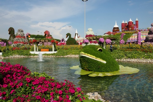 Pond with flower frog at Dubai Miracle Garden, UAE