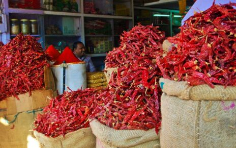 Sacks of chilli peppers in the Pink City, Jaipur, India
