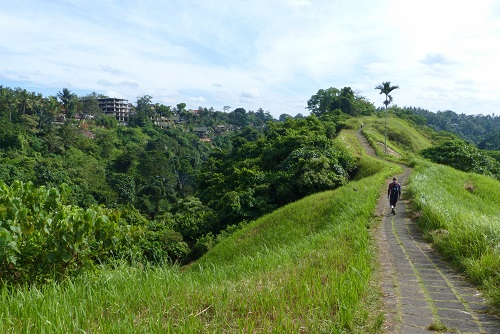 Campuhan Ridge Walk and river valley view in Ubud, Bali