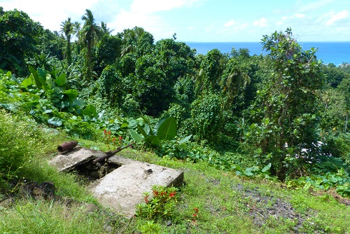 Gun and bunker on hillside in Chuuk, Micronesia