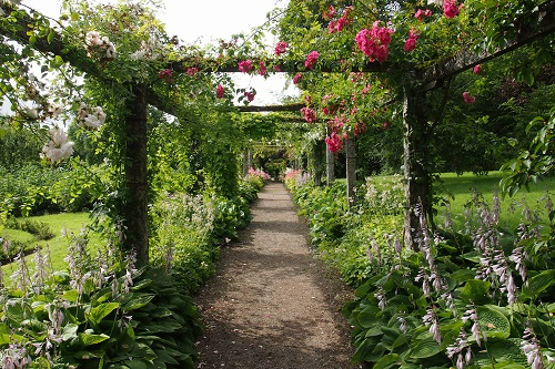 Rose trellis at Florence Court near Enniskillen, Northern Ireland