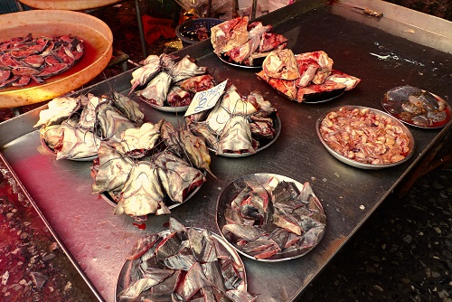 Plates of catfish heads and innards at Khlong Toei Market in Bangkok, Thailand